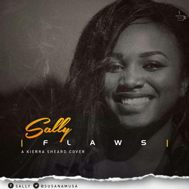 Flaws by sally